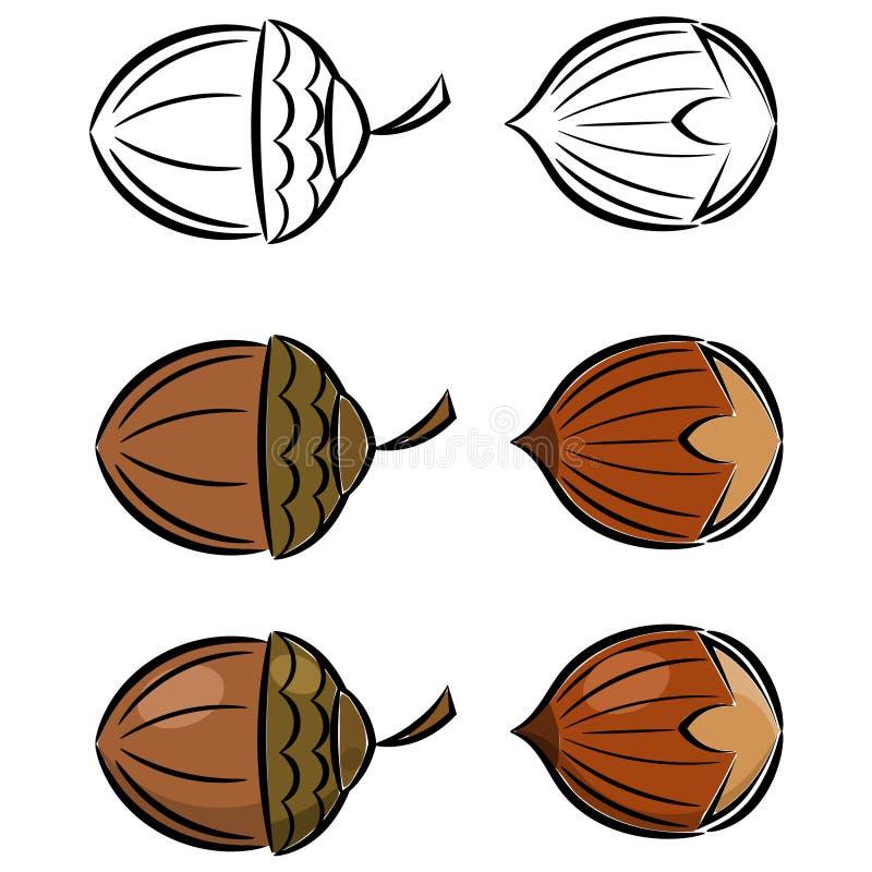 Cartoon set of images of hazelnut and acorn. Eps10 royalty free illustration