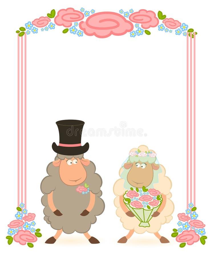 Cartoon sheep bridegroom and bride vector illustration