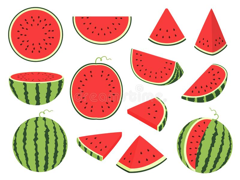 Cartoon slice watermelon. Green striped berry with red pulp and brown bones, cut and chopped fruit, half and sliced on royalty free illustration