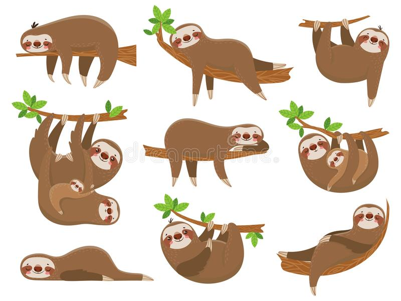 Cartoon sloths family. Adorable sloth animal at jungle rainforest. Funny animals on tropical forest trees vector set royalty free illustration