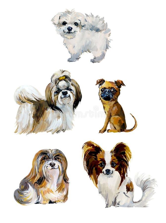 Cartoon small dogs. Gouache hand drawn illustration stock illustration