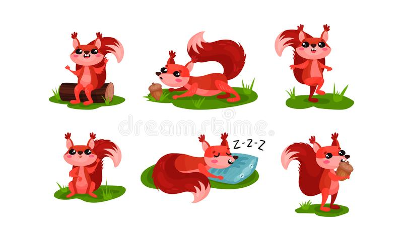 Cartoon Squirrel Character Playing With Nut Vector Set vector illustration