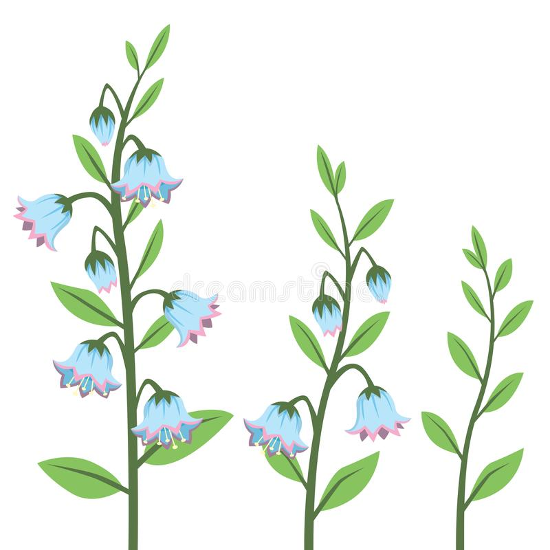 Cartoon Style Bluebell Flower Design Elements Set Isolated on White. All elements are grouped together logically and easy to edit vector illustration