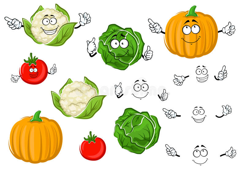 Cartoon tomato, cabbage, pumpkin and cauliflower. Colorful cartoon autumnal juicy red tomato, green crunchy cabbage, ripe orange pumpkin and head of cauliflower vector illustration