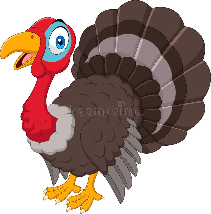 Cartoon turkey isolated on white background stock illustration