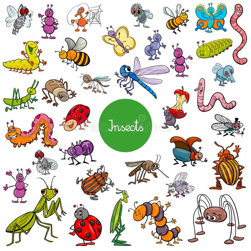 Cartoon insects animal characters big set. Cartoon Vector Illustration of Funny Insects Animal Characters Large Set stock illustration