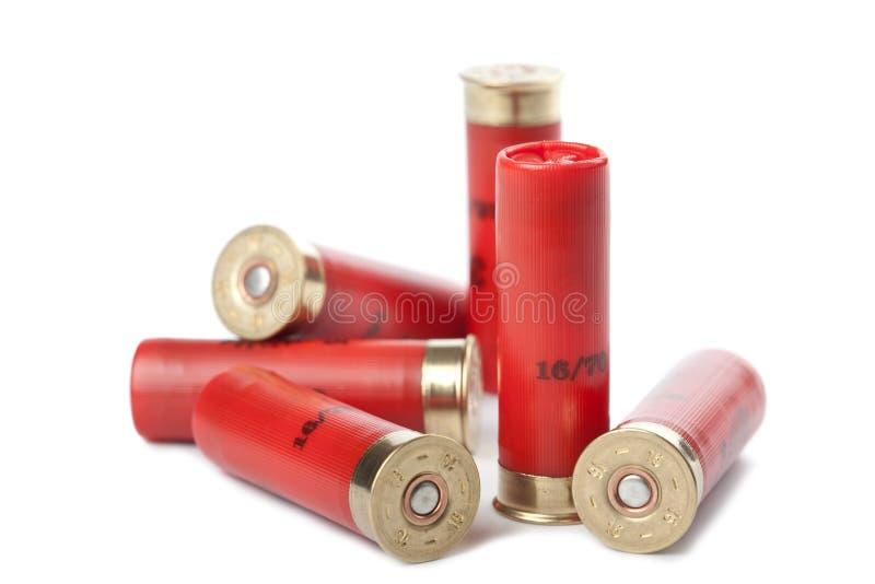 Cartucce del fucile da caccia isolate sopra bianco immagine stock libera da diritti