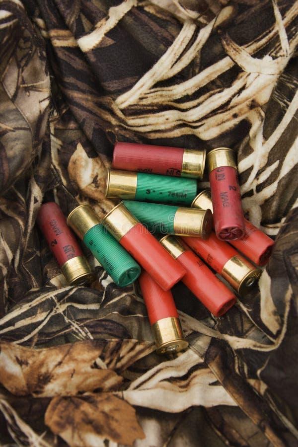 Cartucce per fucili a canna liscia. fotografie stock libere da diritti