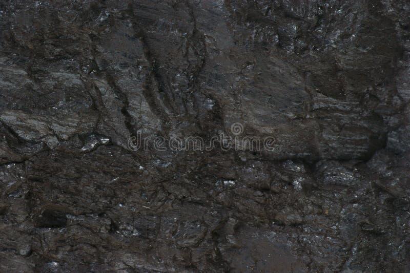Carvão fotografia de stock