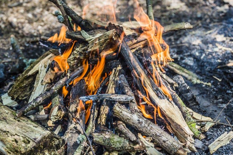 Carvão ardente no assado, fogo do fundo imagens de stock royalty free