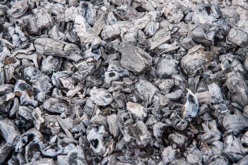 Carvão e cinza, assado, fim acima imagem de stock