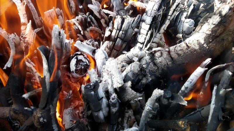 Carvão vegetal da queimadura fotografia de stock