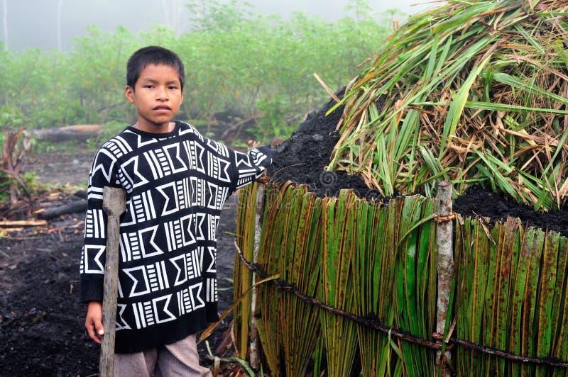Carvão vegetal - Peru fotos de stock