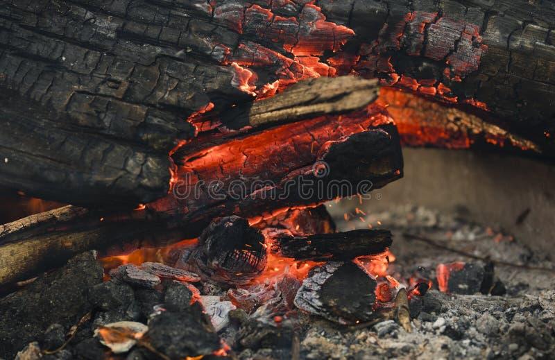 Carvões de incandescência na fogueira fotos de stock royalty free