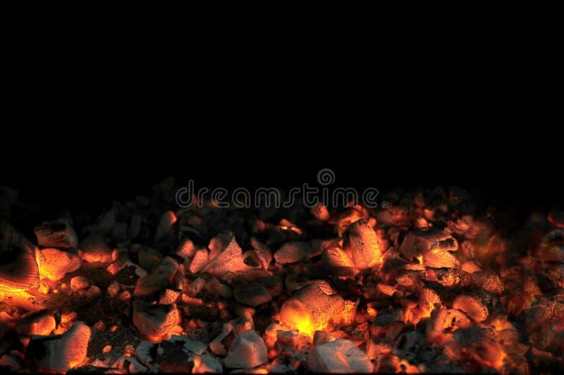 Carvões de LLive com fundo preto imagens de stock royalty free