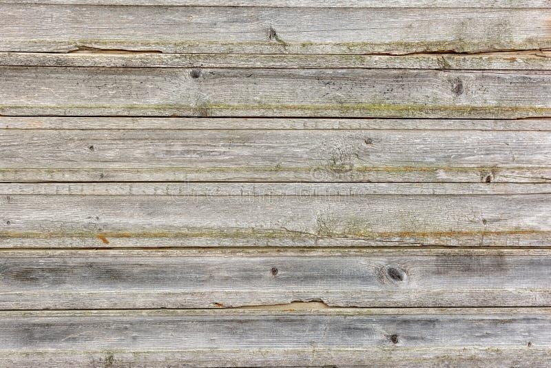 Carvalho natural colorido velho do fundo de madeira da textura imagem de stock