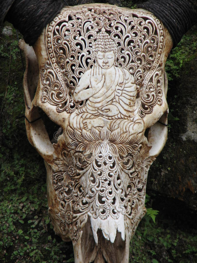 Carved buffalo skull decoration royalty free stock image