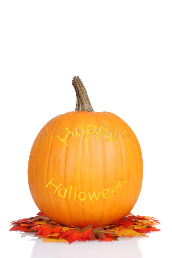 Carved halloween pumpkin on fall leaves royalty free stock image