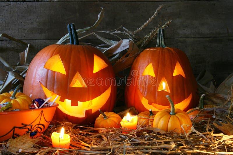Download Carved jack-o-lanterns stock image. Image of jack, season - 3203767