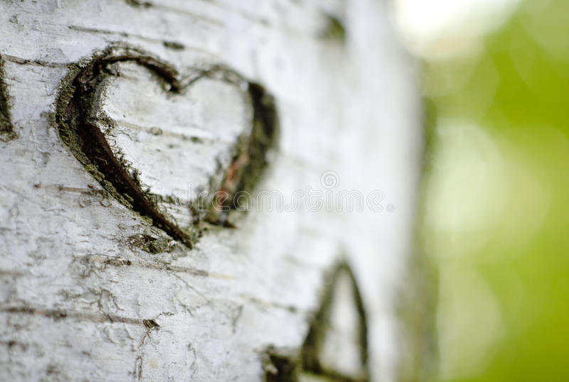 A Carved Love Heart stock image