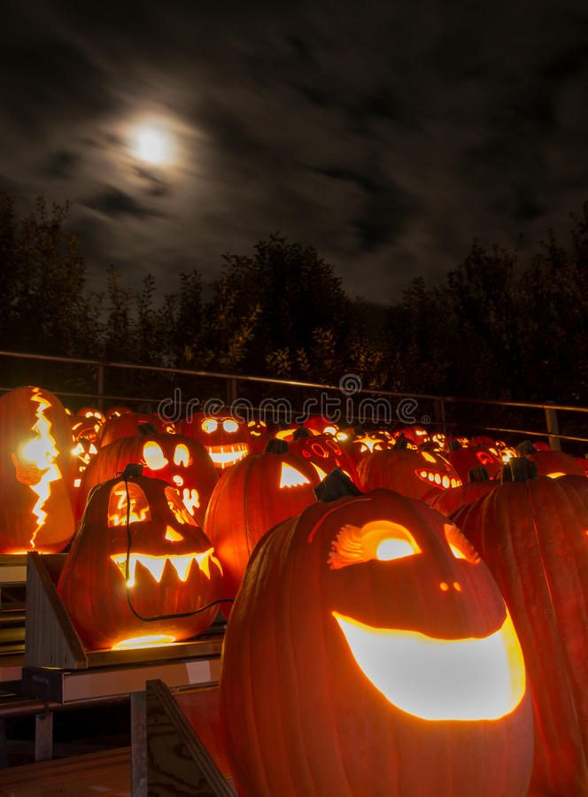 Carved pumpkins and moonlight. A variety of carved pumpkins lit up and on display under a spooky moonlit night royalty free stock images