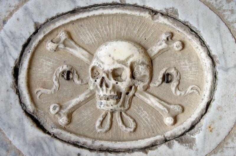 Carved skull stock image