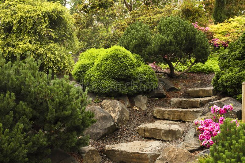 Stone steps arranged as a path way to the garden. stock photo