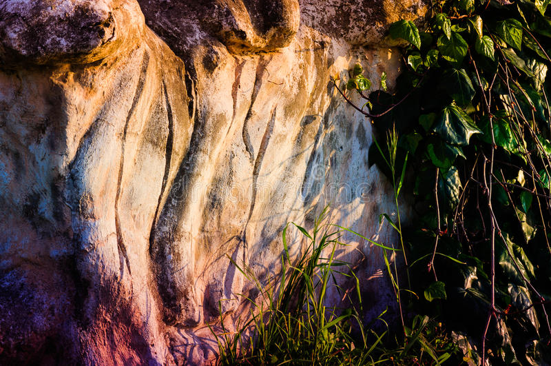 Carved Stone With Vegetation stock images