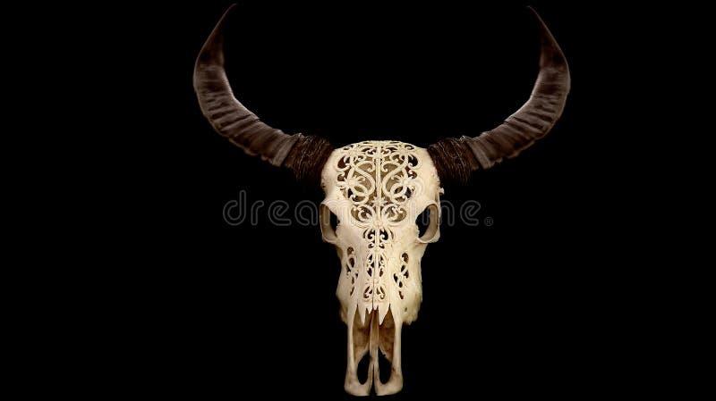 Carved texas longhorn buffalo skull decoration royalty free stock photos