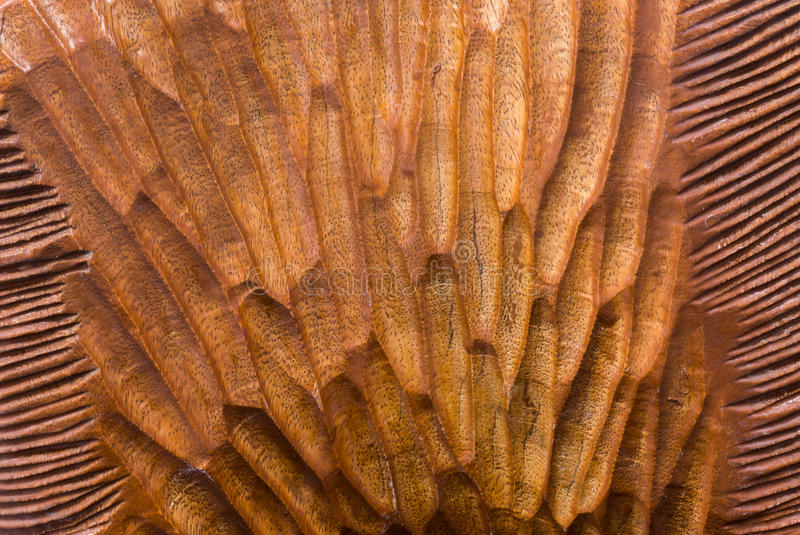 Carved Tree Texture with Light Brown Mixed Pattern on Wood Background royalty free stock photography