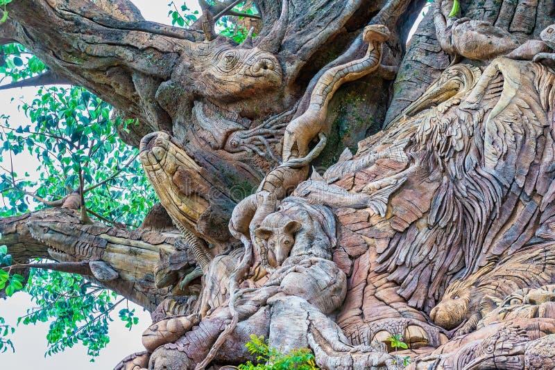 Carvings på trädet av liv på Disney djurriket arkivbild