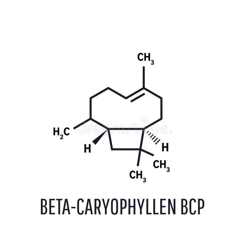 Caryophyllene molekyl Konstituent av ?tskilliga v?xt- n?dv?ndiga oljor, inklusive kryddnejlikaolja Skelett- formel stock illustrationer