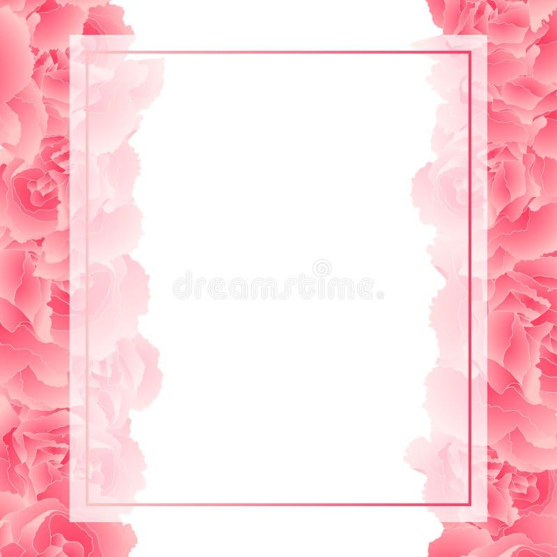 Caryophyllus del clavel - frontera rosada de la tarjeta de la bandera de la flor del clavel Ilustración del vector stock de ilustración