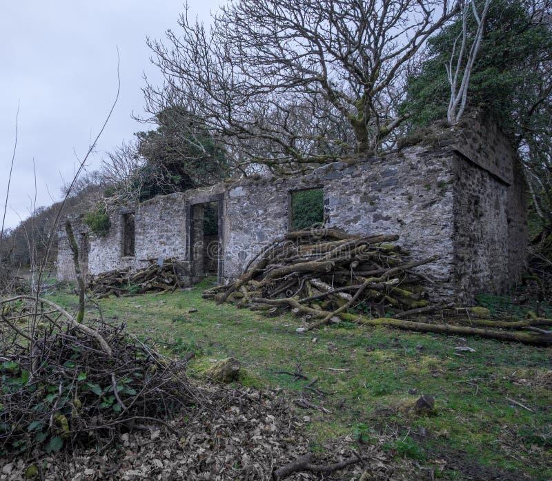 Casa abandonada da balsa no Bute fotografia de stock royalty free