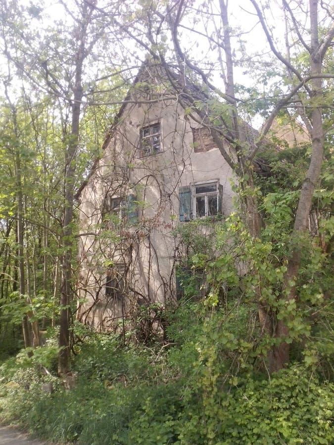 Casa abandonada em uma madeira fotografia de stock royalty free