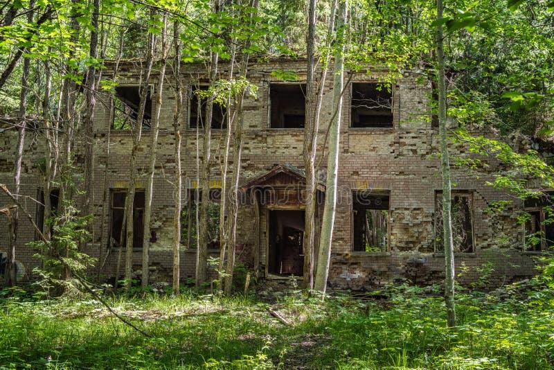 Casa abandonada en el medio de un bosque verde imagen de archivo libre de regalías