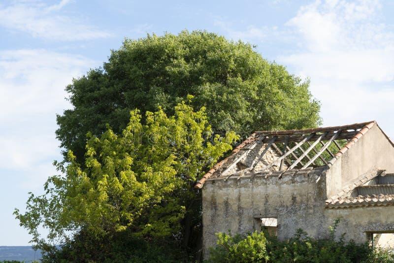 Casa abandonada en el medio del viñedo imagenes de archivo