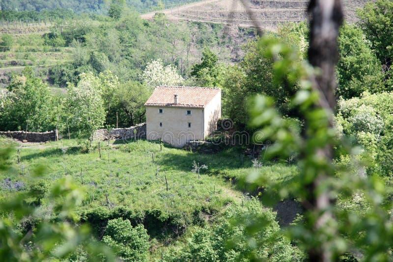 Casa abandonada sola en el medio del verde imagenes de archivo