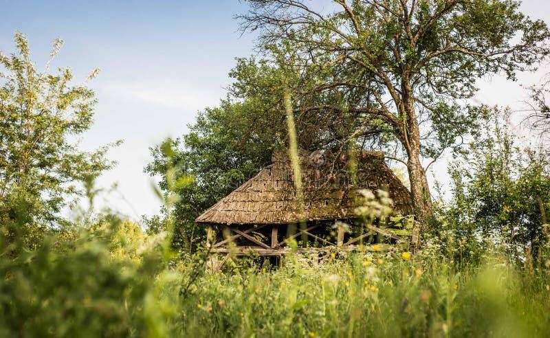 Casa abbandonata; fondo di estate, erba verde e fiori selvaggi fotografie stock libere da diritti
