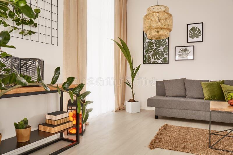 Casa accogliente con le piante da appartamento decorative immagine stock libera da diritti