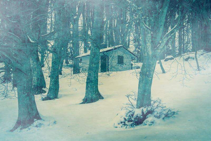 Casa aislada del fantasma en el bosque oscuro con niebla imagenes de archivo