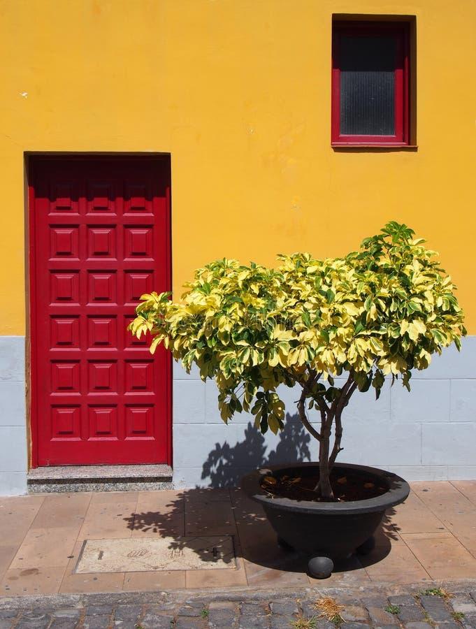 Casa amarela brilhante tradicional em tenerife com porta vermelha fotos de stock