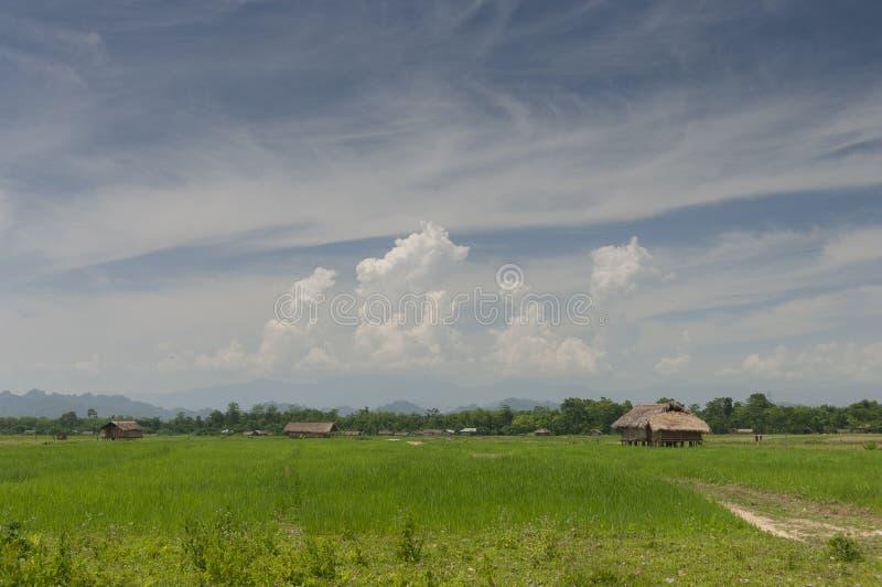 Casa Assamese del pueblo cerca de Tinsukia Assam imágenes de archivo libres de regalías