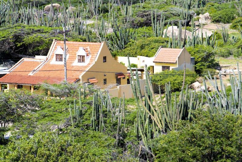Casa baseada na vegetação com o cati em Hooiberg, Aruba imagem de stock royalty free