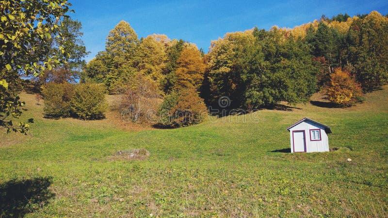 Casa blanca de la cabaña en un campo con los árboles en caída/otoño imagen de archivo libre de regalías