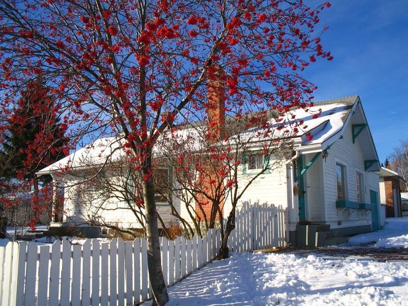 Casa blanca en la nieve foto de archivo libre de regalías