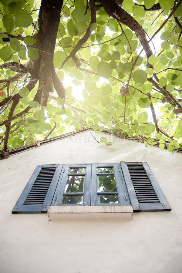 Casa branca da parede com as janelas de madeira azuis fotografia de stock royalty free