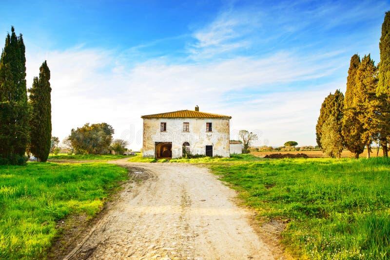 Casa, camino y árboles rurales abandonados viejos en puesta del sol. Toscana, Italia fotografía de archivo libre de regalías