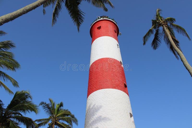 Casa clara entre árvores de coco imagens de stock