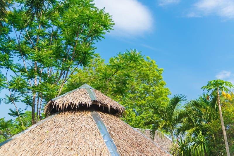 Casa cobrida com sapê do telhado e um jardim verde com o céu azul no país imagem de stock